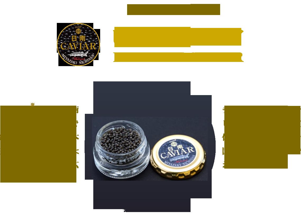 極みの逸品純国産日南キャビアフレッシュ仕立ての日南キャビアは、なめらかで繊細な風味、キャビア本来の口の中でとろけるような濃厚な味わいが広がります。チョウザメ養殖からキャビア製造まで自社一貫体制だから、安心安全な国産キャビアを産直でお届けします。