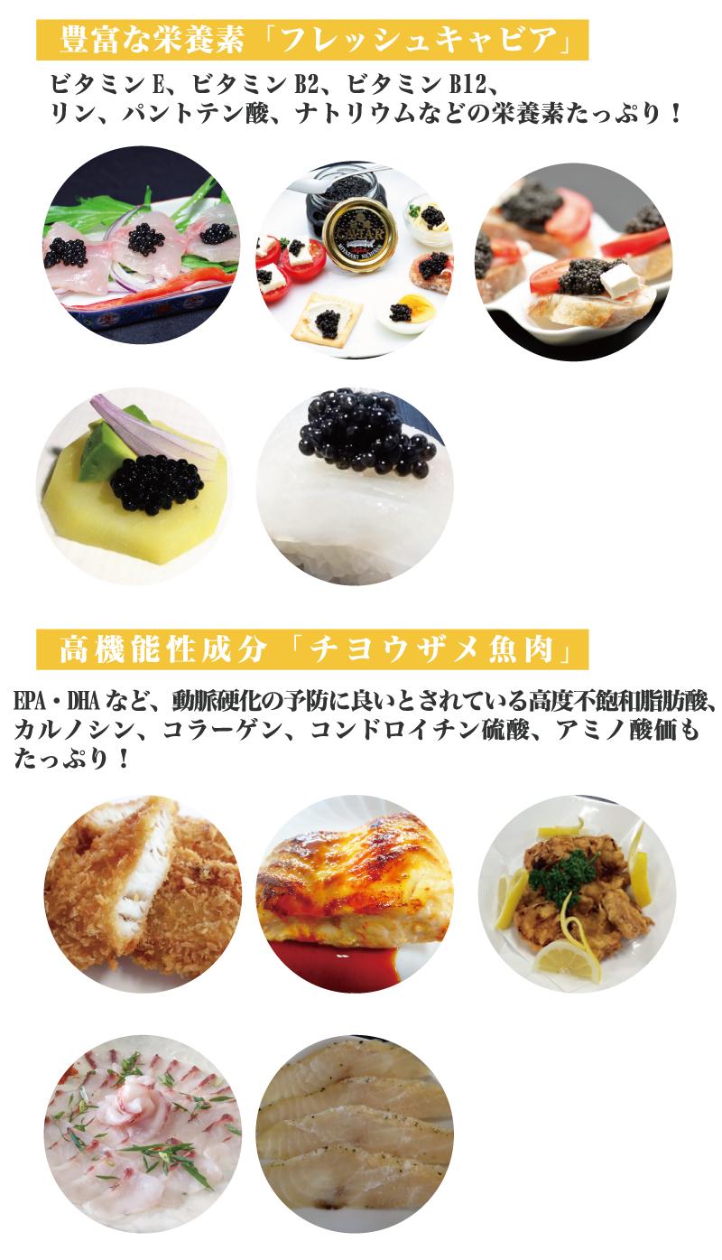 食欲の秋・食欲モリモリ特別キャンペーン!